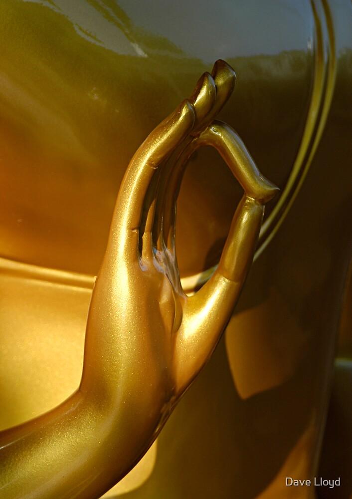 Golden Hand by Dave Lloyd