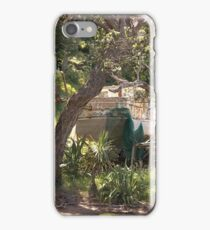 A last restful place for Lady Isla.........!! iPhone Case/Skin