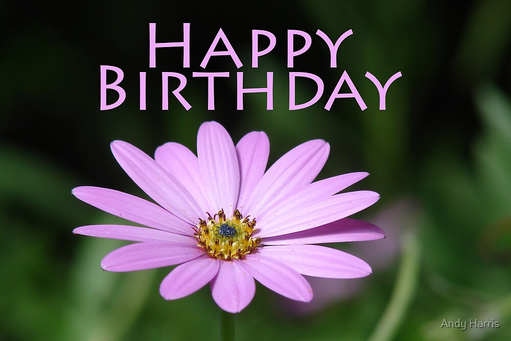 "flower birthday card"" by andy harris  redbubble, Beautiful flower"