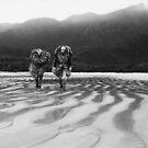 South Tasmanian Adventure by foto