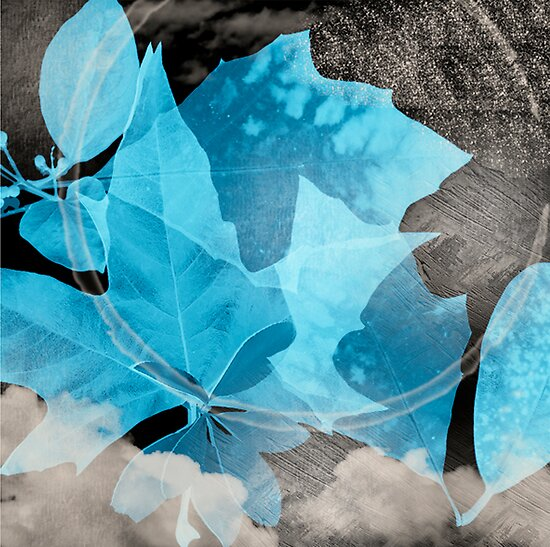 Blue Leaves by gemynd