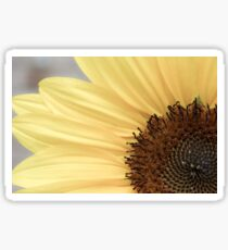 Macro Sunflower Photography Sticker