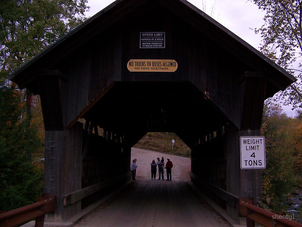 Emily's Bridge by shenty1