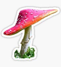 Amanita  Sticker