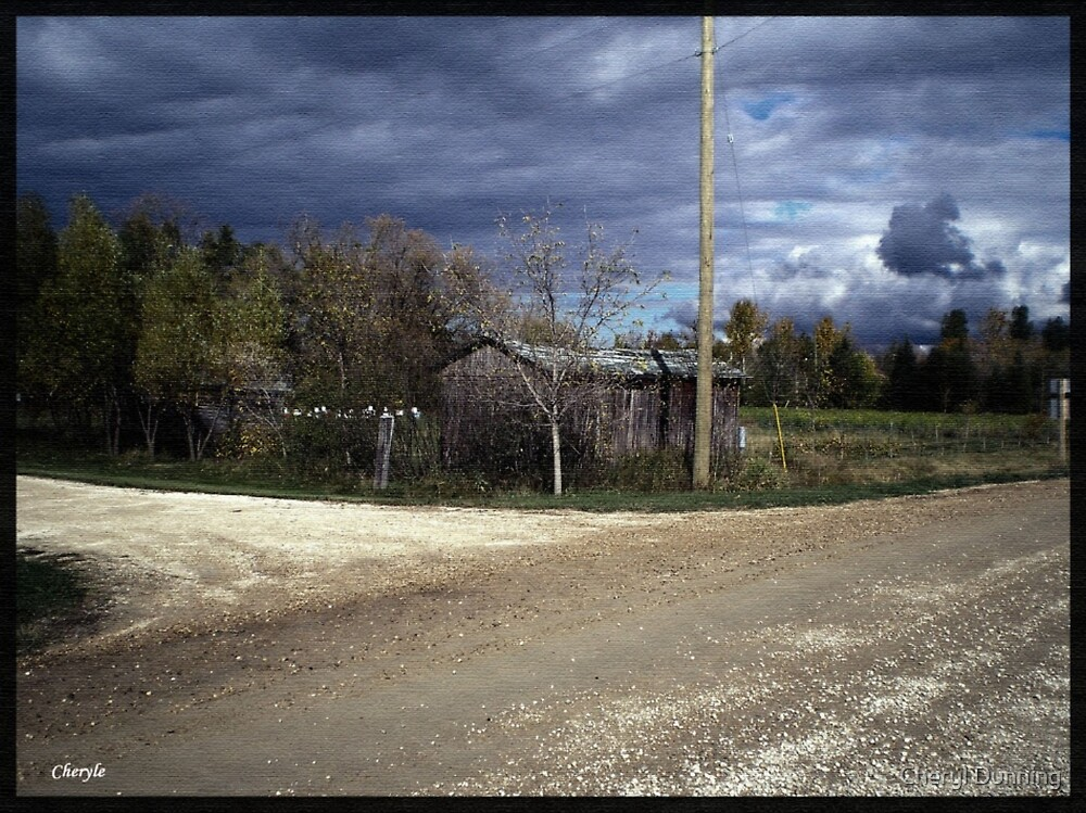 a storm coming by Cheryl Dunning