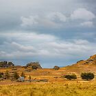 Wide Open Spaces of Otago by Linda Cutche