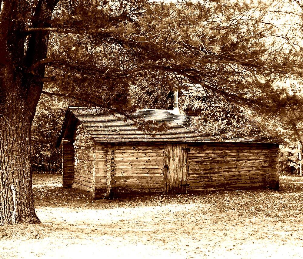 The Woodshed 2 by nikspix