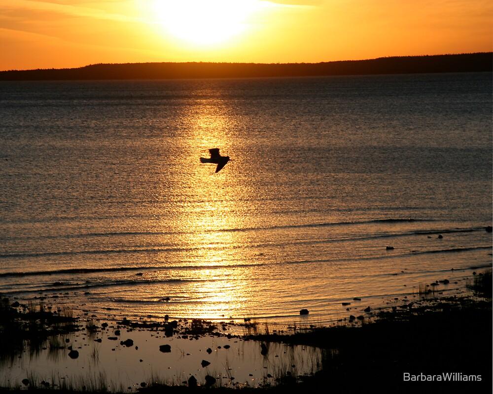 Sunrise On Lake Michigan by BarbaraWilliams