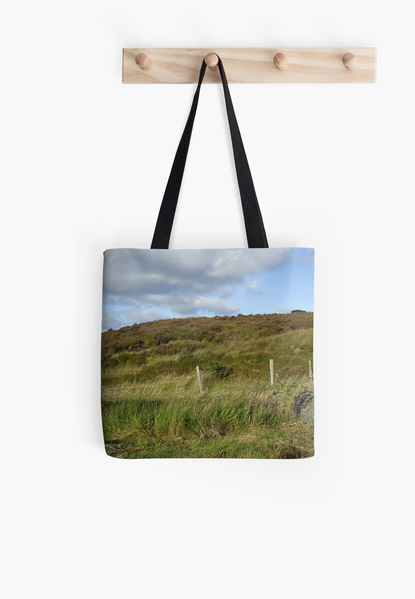 Heather banks at Pigeon top, county Tyrone, N.Ireland by anamcara
