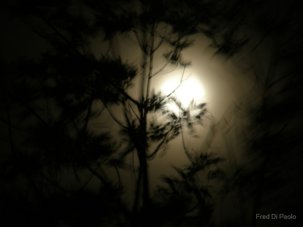 autumn moon 2 by Fred Di Paolo