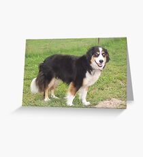 Kujo Greeting Card