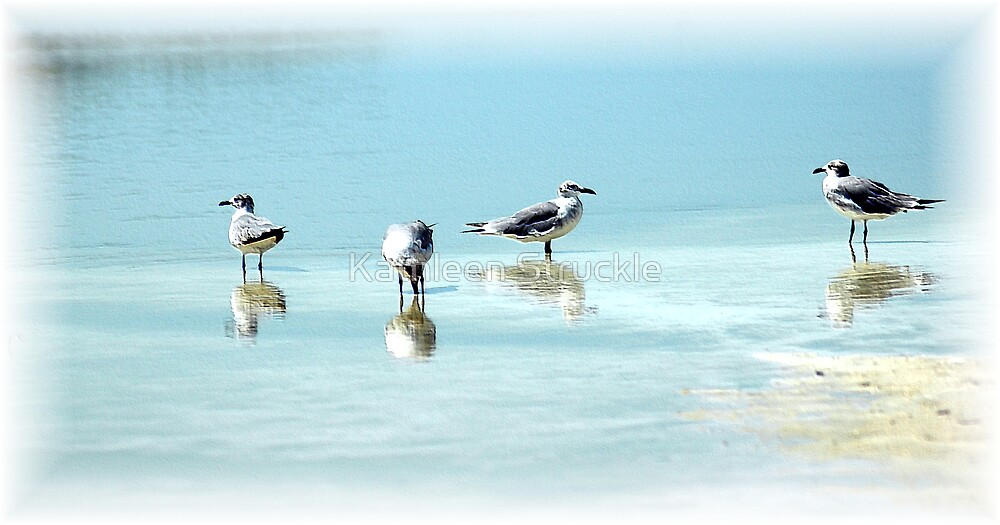 Sandpipers by Kathleen Struckle