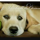 Have a ball this Christmas....CHRISTMAS CARD!! by Melinda Kerr