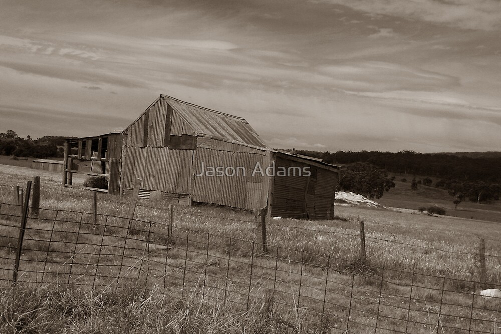The Shed by Jason Adams