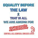 Equality Before the Law by Initially NO