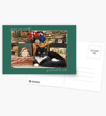 peace on earth....good will to cats Postcards