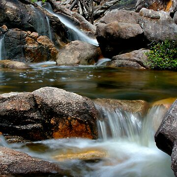 Spring Creek by Lis29