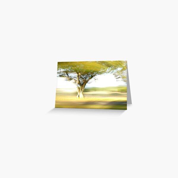 Tree - Lightpainting Greeting Card