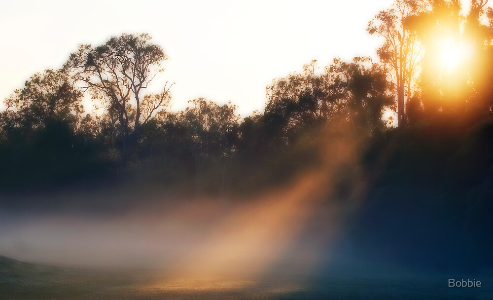 First Light by Bobbie