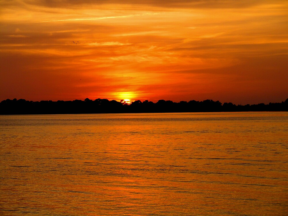 Sunset at Cedar Key by John  Simmons
