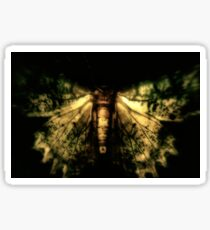 Fantastical Moth Sticker