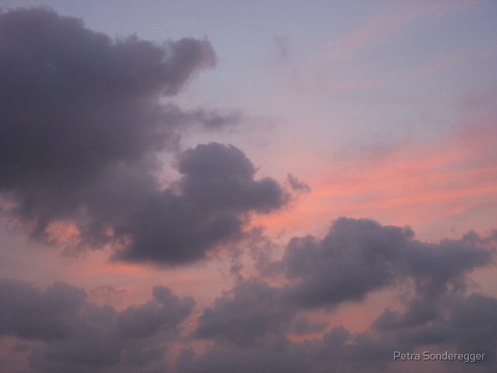 Pink Sunset by Petra Sonderegger
