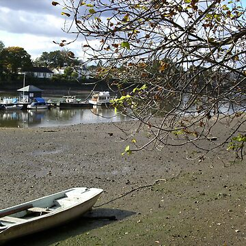 Sunny Autumn Day in Chiswick by Joanna16