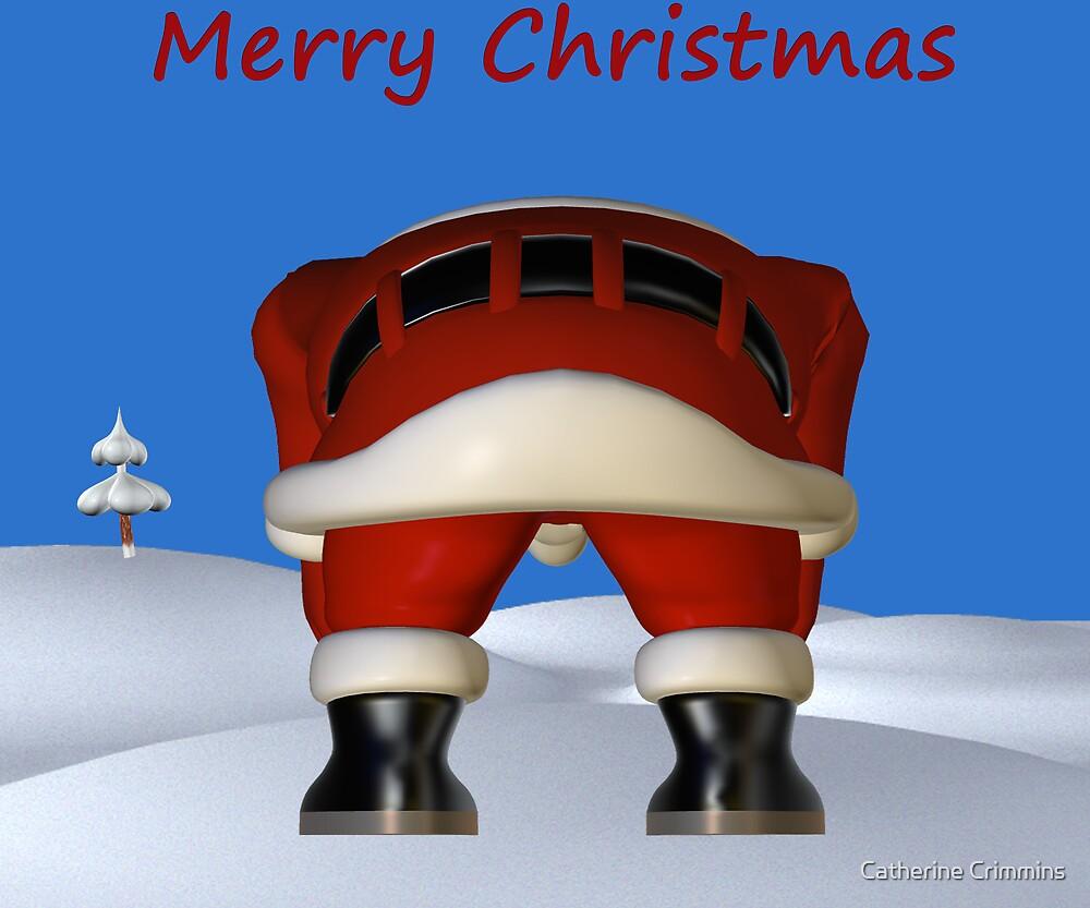 Ummmm Santa?? by Catherine Crimmins
