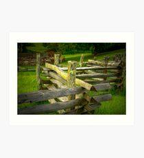 FENCE 1B 3466 Art Print