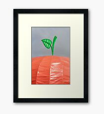 Big Apple Framed Print