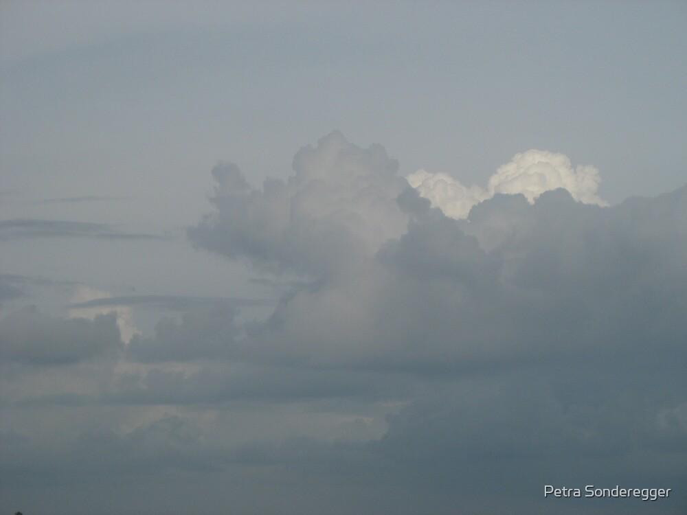 Monsoon 1 by Petra Sonderegger