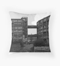 Park Hill in February Throw Pillow