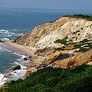 Cliffs Of Gayhead by Nancy Richard
