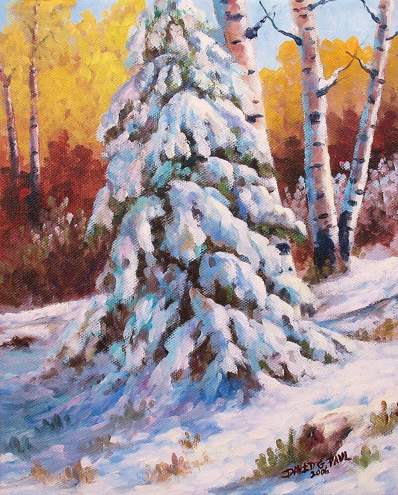 Snow Blanket by David Paul