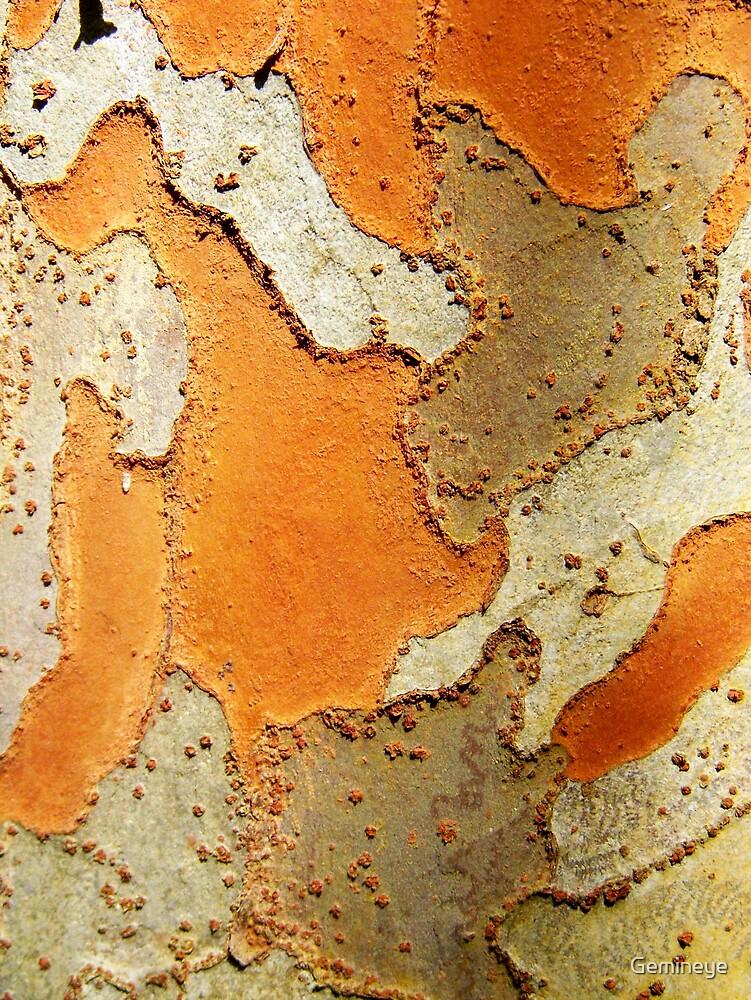 Bark by Gemineye