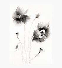 Wild Flowers Photographic Print
