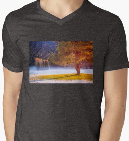 Big tree in the mist T-Shirt