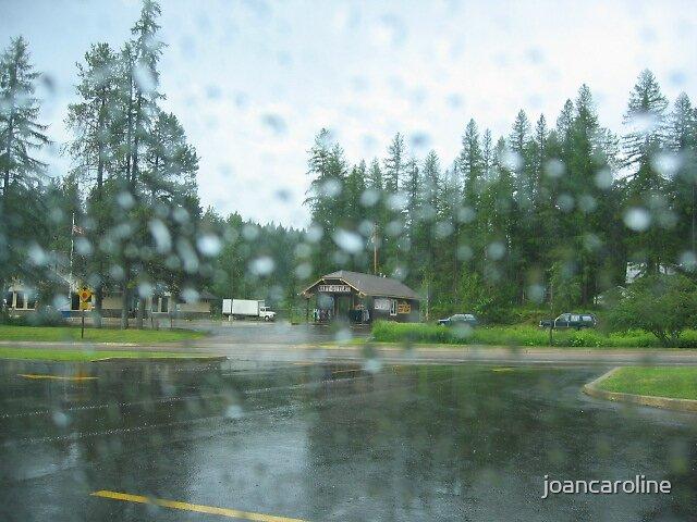 Rainy Glacier by joancaroline