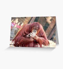 OrangUtan Coiffure Greeting Card