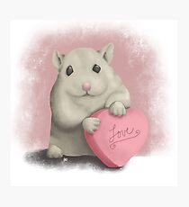 Hamster Love Photographic Print