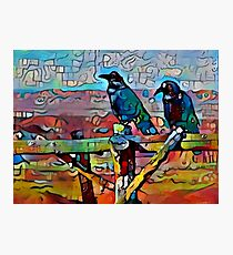 Ravens on the fence Photographic Print