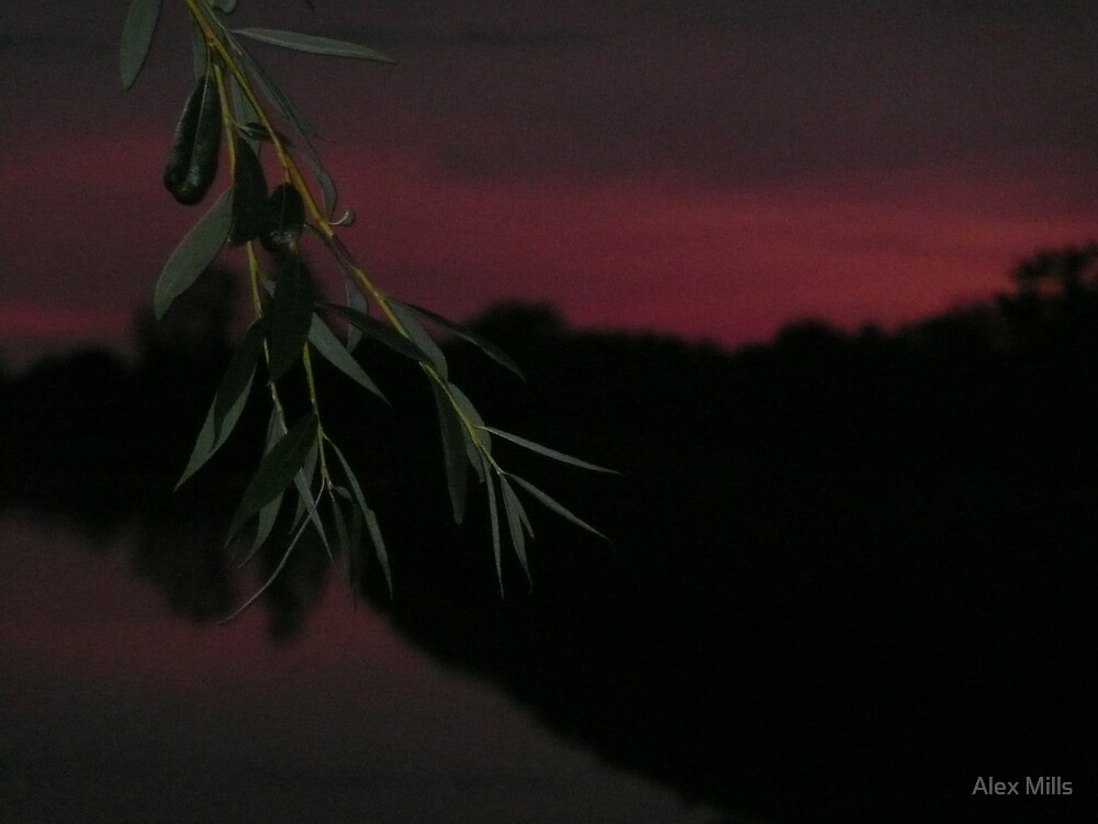 red sky at night.. by Alex Mills