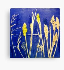 Mornington Peninsula Grasslands12 Canvas Print