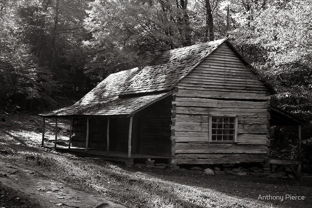 Ogle's Home by Anthony Pierce
