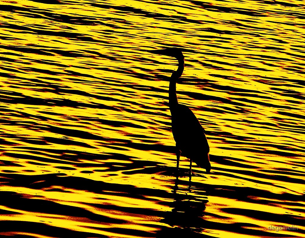 the shadow on sunset  by degamelin