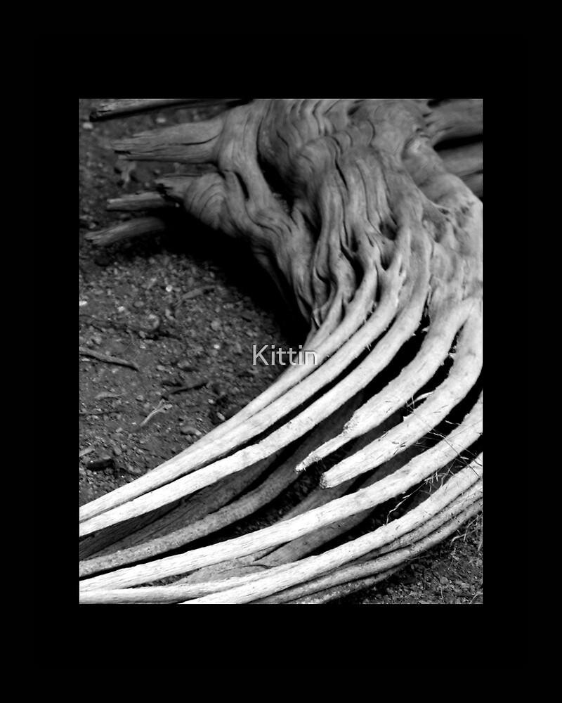 hollow 02 by Kittin