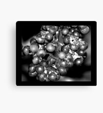 berries 02 Canvas Print