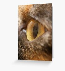 Bettys' eye Greeting Card