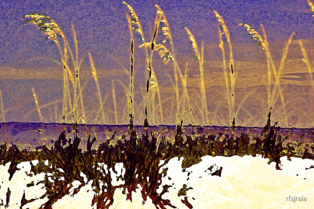 beach grass by rfsjraia