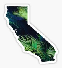 california palm Sticker